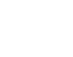 All Valley Limo | McAllen, TX